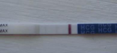 Беременность на тесте